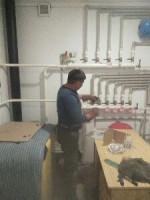 Отопление сантехника установка газовый котел