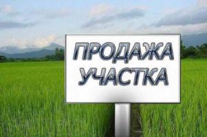 Тез арада Лавдан-Кара Кайрагачтан 6 сотых