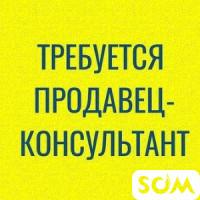 Требуются консультанты говорящие на русском и кыргызских языках