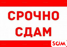 Сдаётся 1 комнатный частный дом с прихожкой в Новопавловке