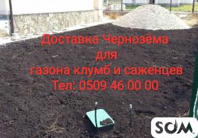Чернозем Садовый грунт