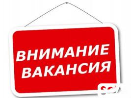 Требуется консультант в торговую компанию, г. Бишкек