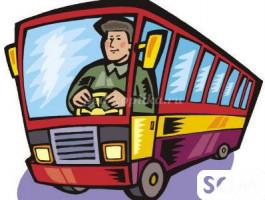Требуется водитель со стажем, для развозки детей