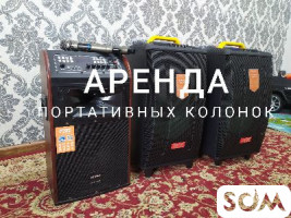 Аренда портативных колонок с радио микрофоном (колонки на аккумулятор)